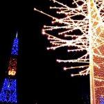 きらきらクリスマス市