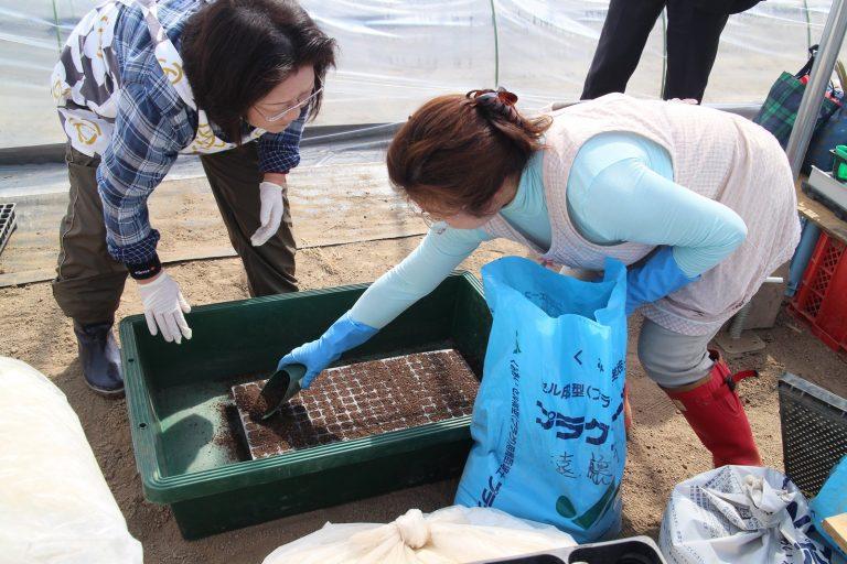 いきいきファーム 2016年 4月◆トマトの播種は、たいへん繊細な作業でした◆