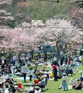 2018年 5月12日~ 第69回あっけし桜・牡蠣まつり