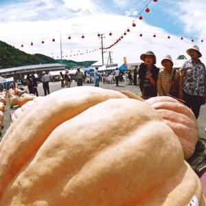 2019年 9月 7日~2019年 9月8日 かぼちゃ祭り「シンデレラ夢2019」