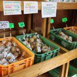 いきいきファーム 2016年 8月◆朝どり新鮮野菜の直売所は毎週土日水営業中◆