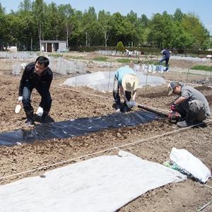 【農園プロジェクト2013】春の薫り(前編) 2013.06.01