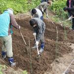 【農園プロジェクト2014】畑のできるまで 2014.05.24