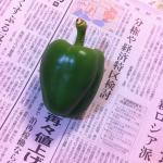 【農園プロジェクト2014】ピーマン 2014.09.06