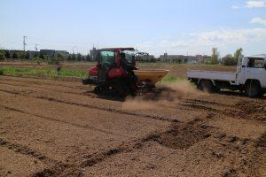 5.肥料をまく