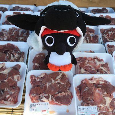 2019年 8月 3日~8月 4日 羽幌町 焼尻めん羊まつり