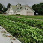 札幌で本格農業を学べる学校、ご紹介します!