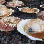 2019年4月28日 第10回別海町ジャンボホタテ・ホッキ祭り